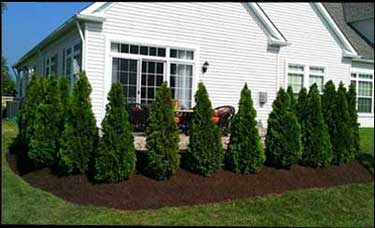 Chesterland Property, Landscaping & Snow Plowing Services